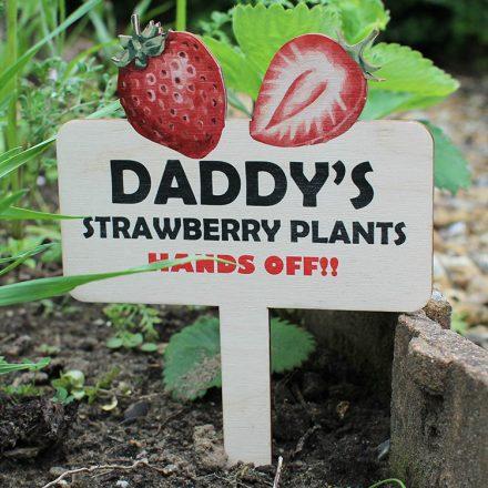Personalised Garden Or Allotment Sign RFPSI002UV